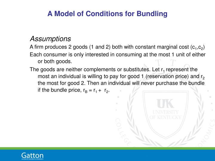 A Model of Conditions for Bundling