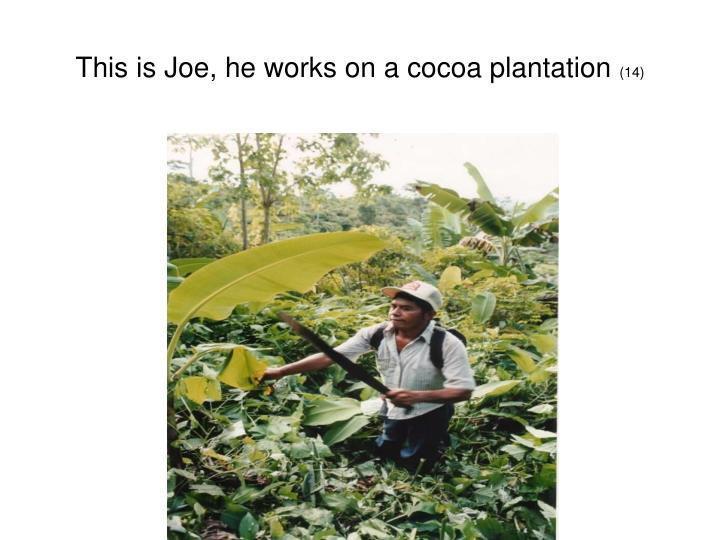 This is Joe, he works on a cocoa plantation