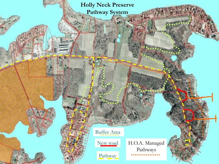 Holly Neck Preserve