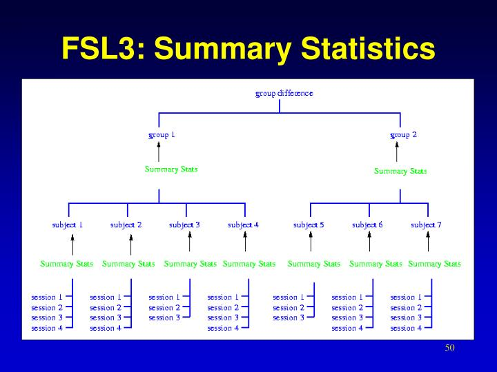 FSL3: Summary Statistics