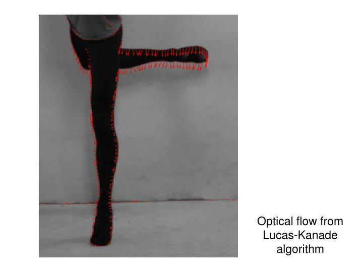 Optical flow from Lucas-Kanade algorithm