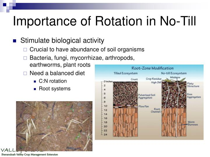 Importance of Rotation in No-Till