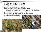slugs 1 cnt pest