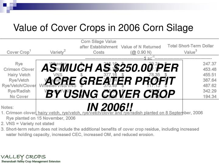 Value of Cover Crops in 2006 Corn Silage