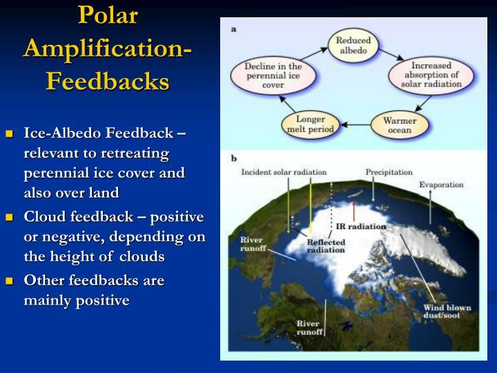 Polar Amplification- Feedbacks