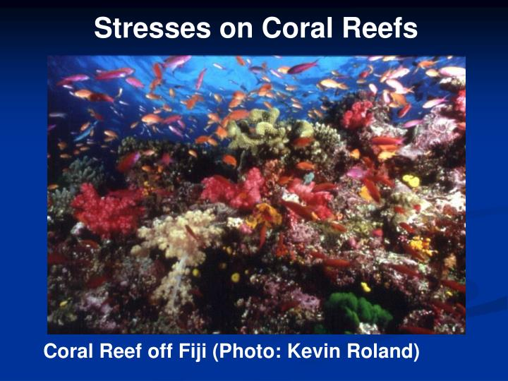 Stresses on Coral Reefs