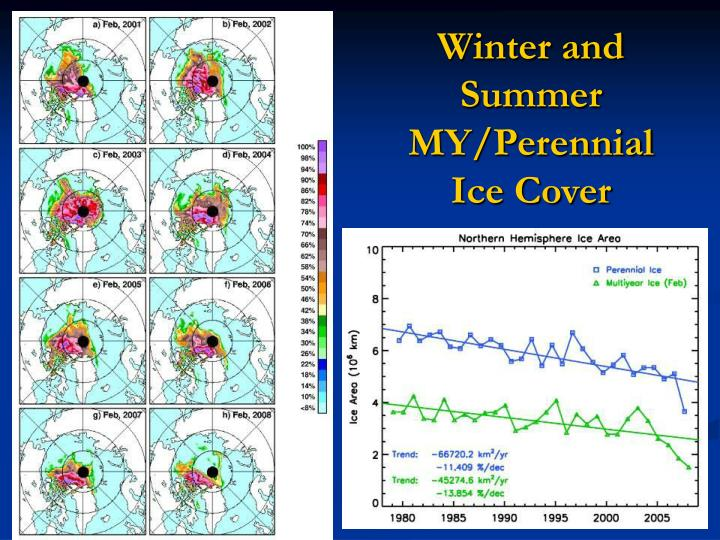 Winter and Summer MY/Perennial Ice Cover