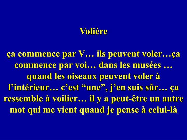 Volière