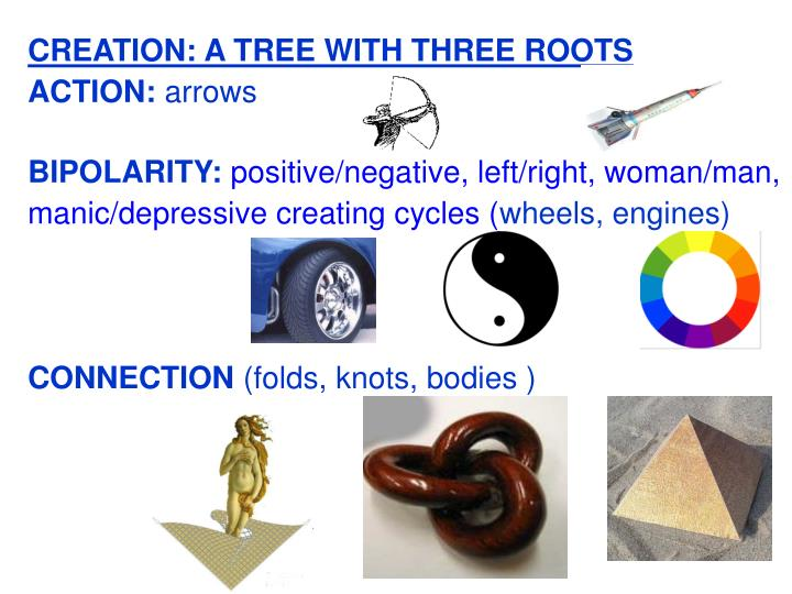 CREATION: A TREE WITH THREE ROOTS