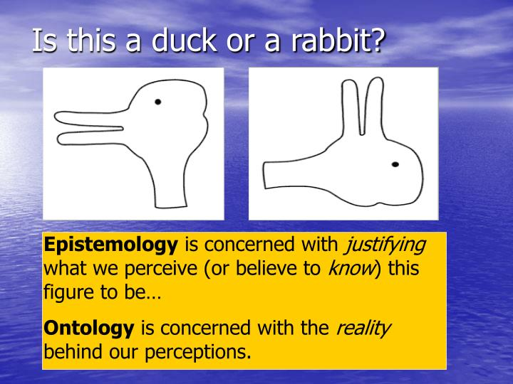 Is this a duck or a rabbit?