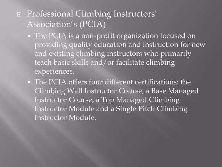Professional Climbing Instructors' Association's (PCIA)