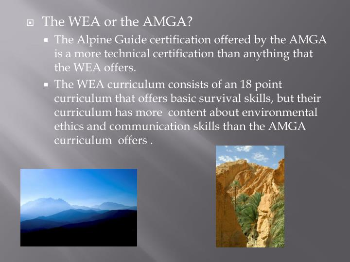The WEA or the AMGA?