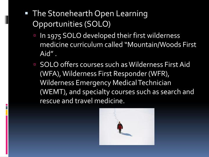 The Stonehearth Open Learning Opportunities (SOLO)