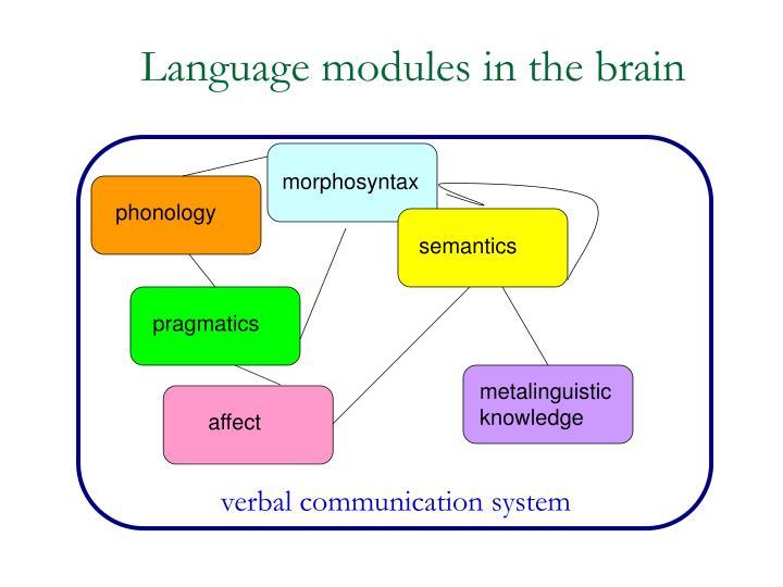 Language modules in the brain