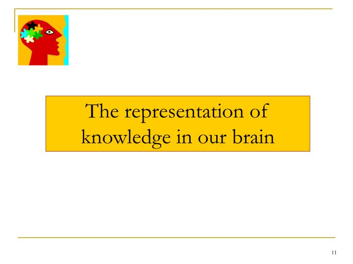 The representation of knowledge in our brain