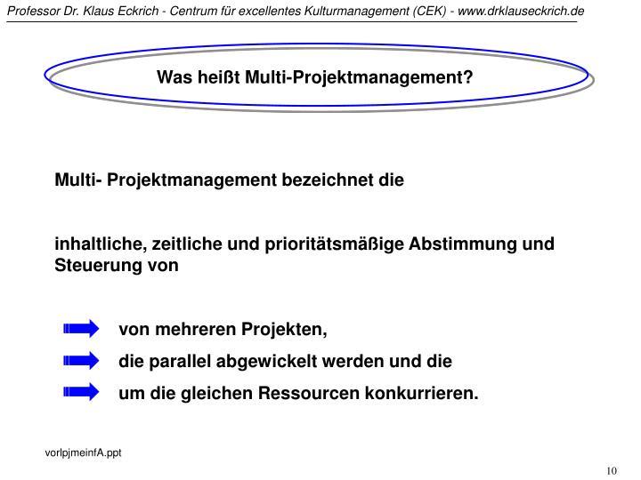 Was heißt Multi-Projektmanagement?