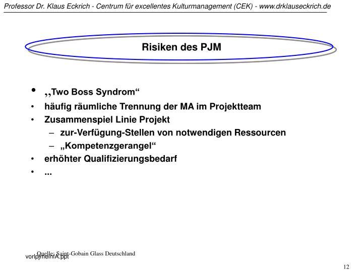 Risiken des PJM