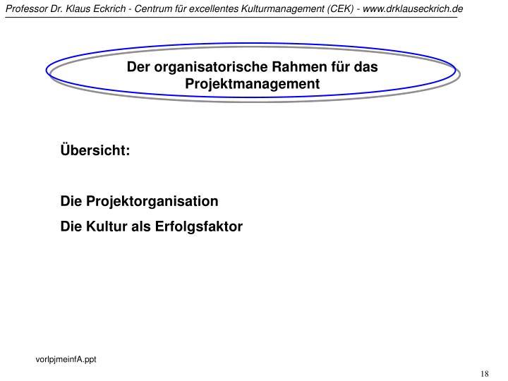 Der organisatorische Rahmen für das Projektmanagement