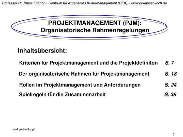 PROJEKTMANAGEMENT (PJM): Organisatorische Rahmenregelungen
