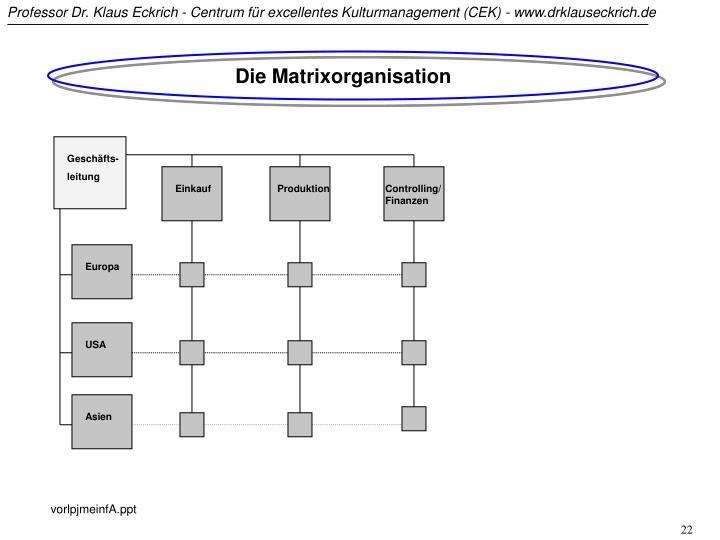 Die Matrixorganisation