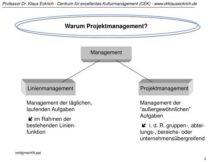 Warum Projektmanagement?