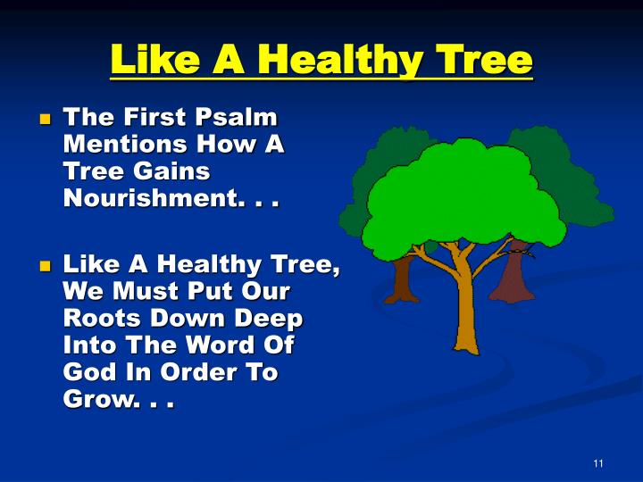 Like A Healthy Tree