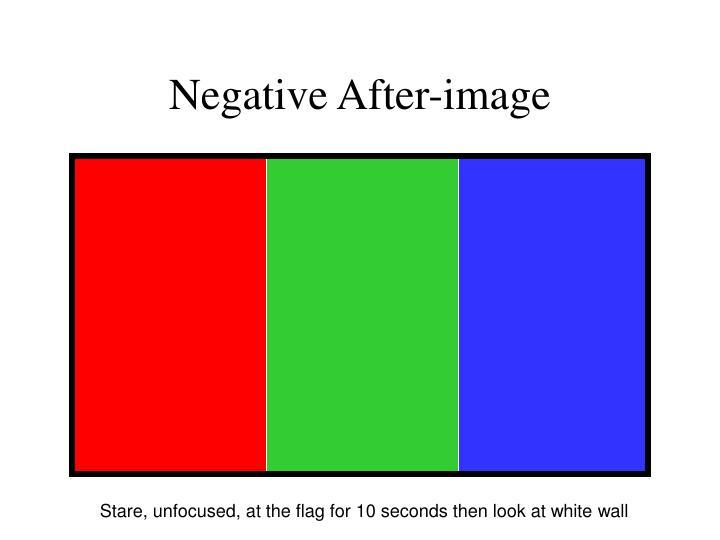 Negative After-image