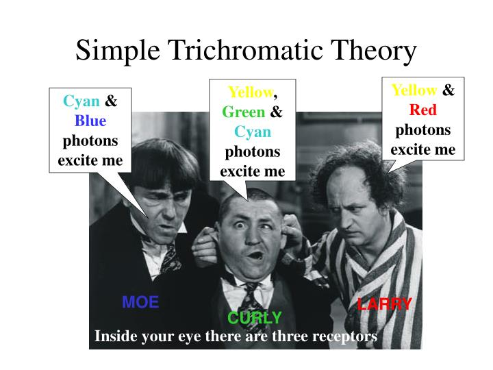 Simple Trichromatic Theory