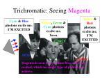 trichromatic seeing magenta