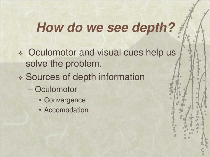 How do we see depth?