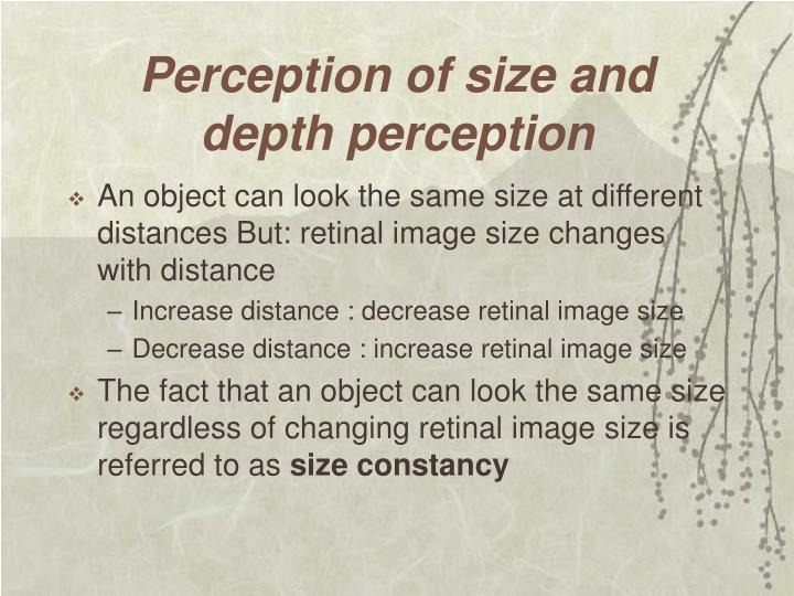 Perception of size and depth perception