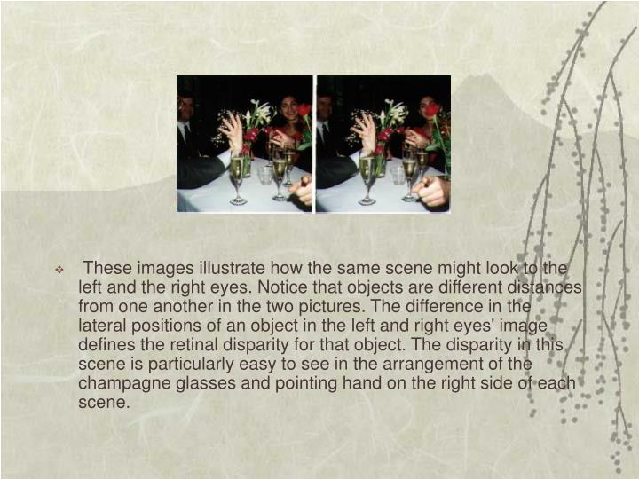 These images illustrate how the same scene might look to the left and the right eyes. Notice that objects are different distances from one another in the two pictures. The difference in the lateral positions of an object in the left and right eyes' image defines the retinal disparity for that object. The disparity in this scene is particularly easy to see in the arrangement of the champagne glasses and pointing hand on the right side of each scene.