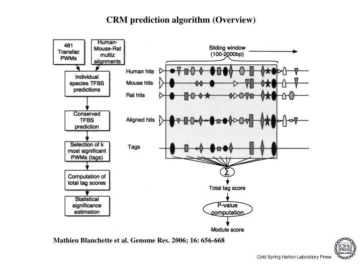 CRM prediction algorithm (Overview)
