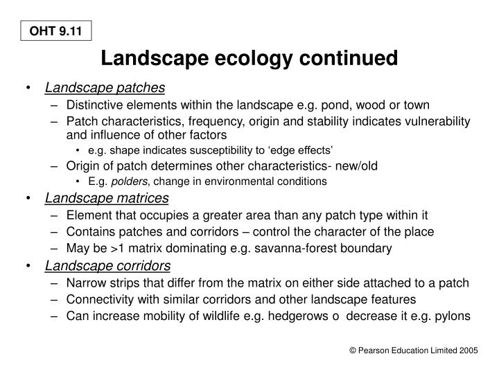 Landscape ecology continued