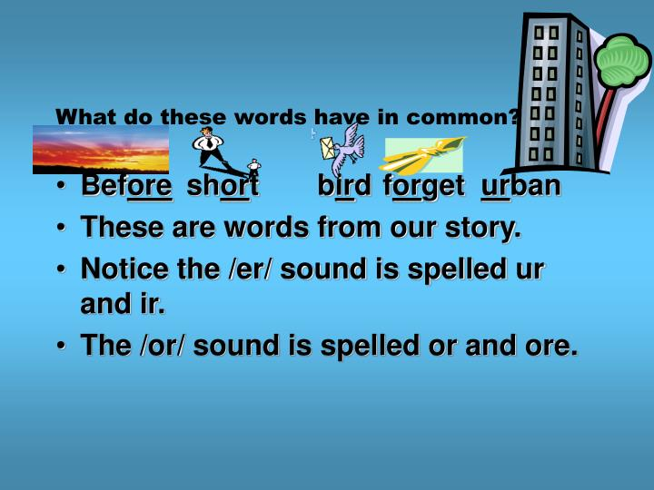 What do these words have in common?