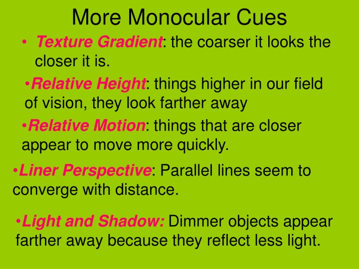 More Monocular Cues