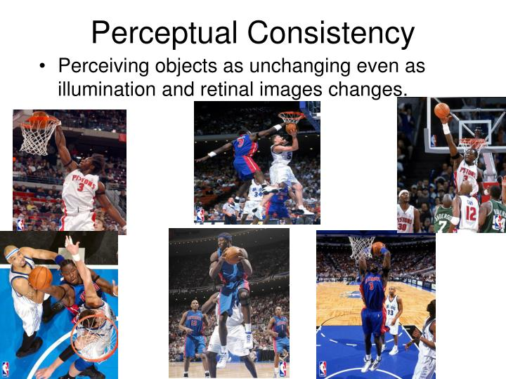 Perceptual Consistency