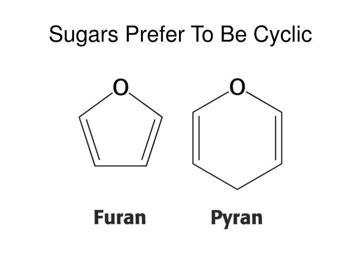 Sugars Prefer To Be Cyclic