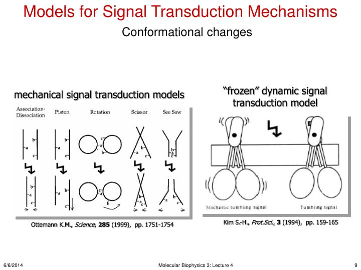 Models for Signal Transduction Mechanisms