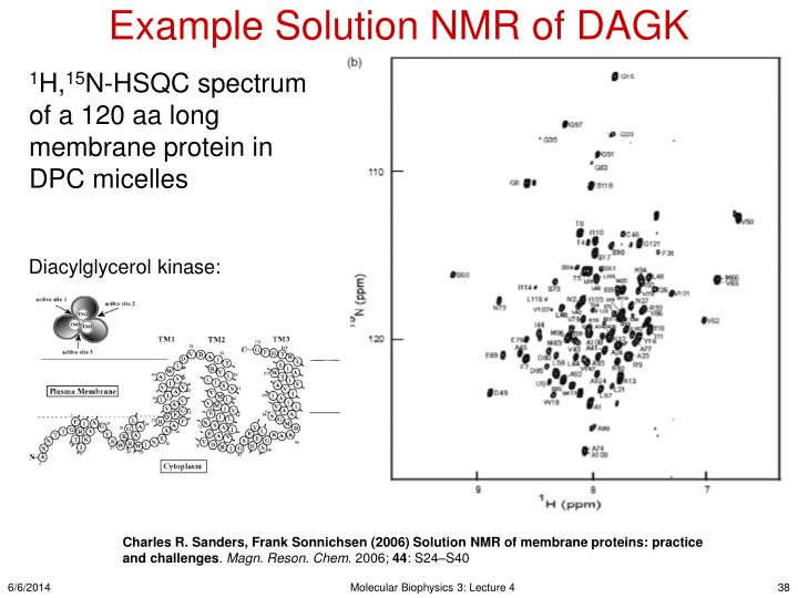 Example Solution NMR of DAGK