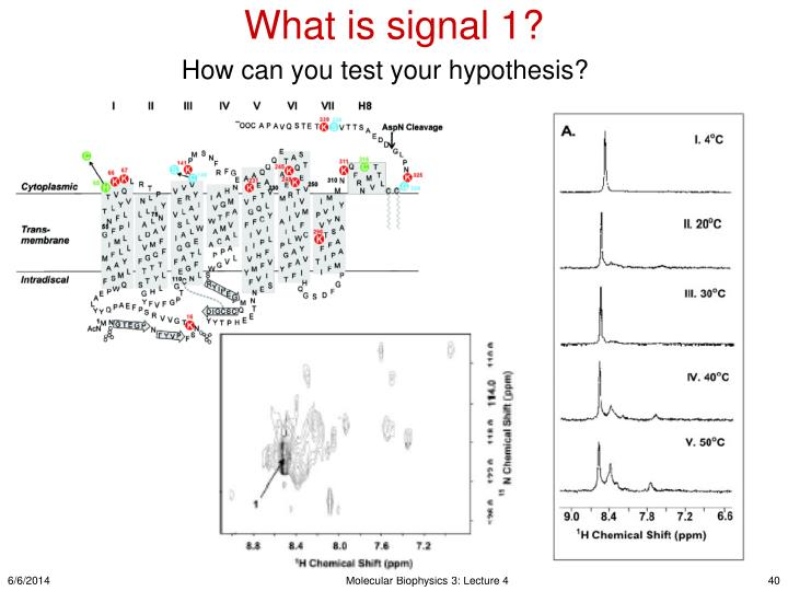 What is signal 1?