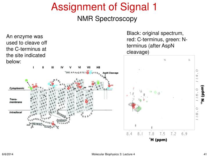 Assignment of Signal 1