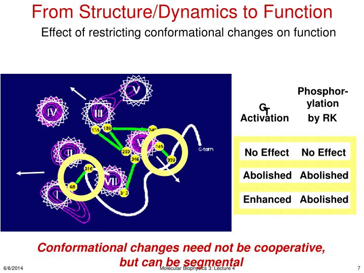 From Structure/Dynamics to Function