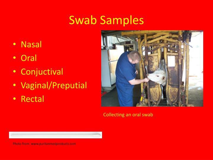 Swab Samples