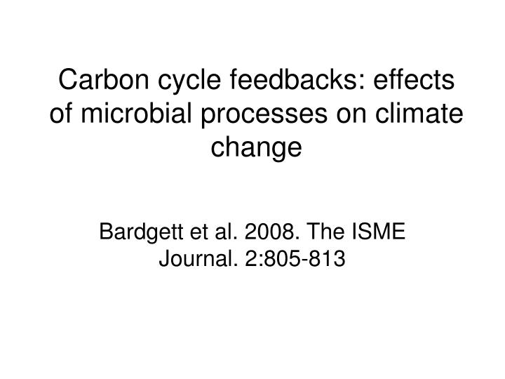 Carbon cycle feedbacks: effects of microbial processes on climate change
