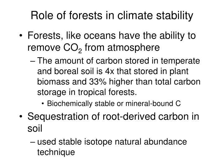 Role of forests in climate stability