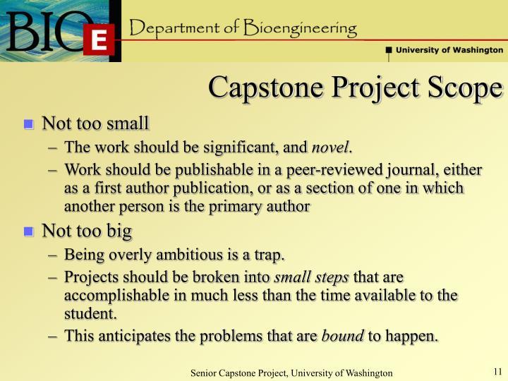 Capstone Project Scope