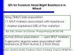 qtl for fusarium head blight resistance in wheat