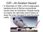 cat an aviation hazard