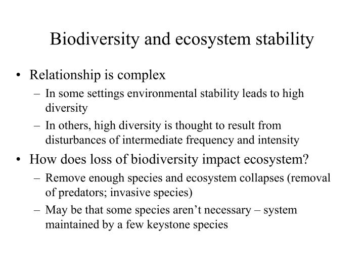 Biodiversity and ecosystem stability